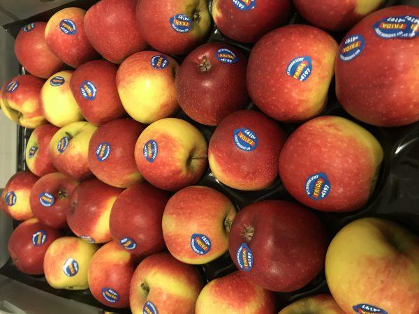 Äpple Frida Sverige